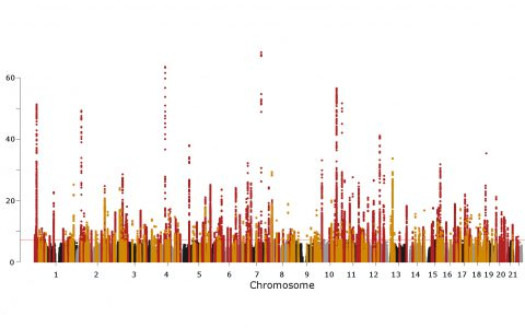 Landmark GWAS Catalogs Blood Pressure Risk in 775,000+ Patients