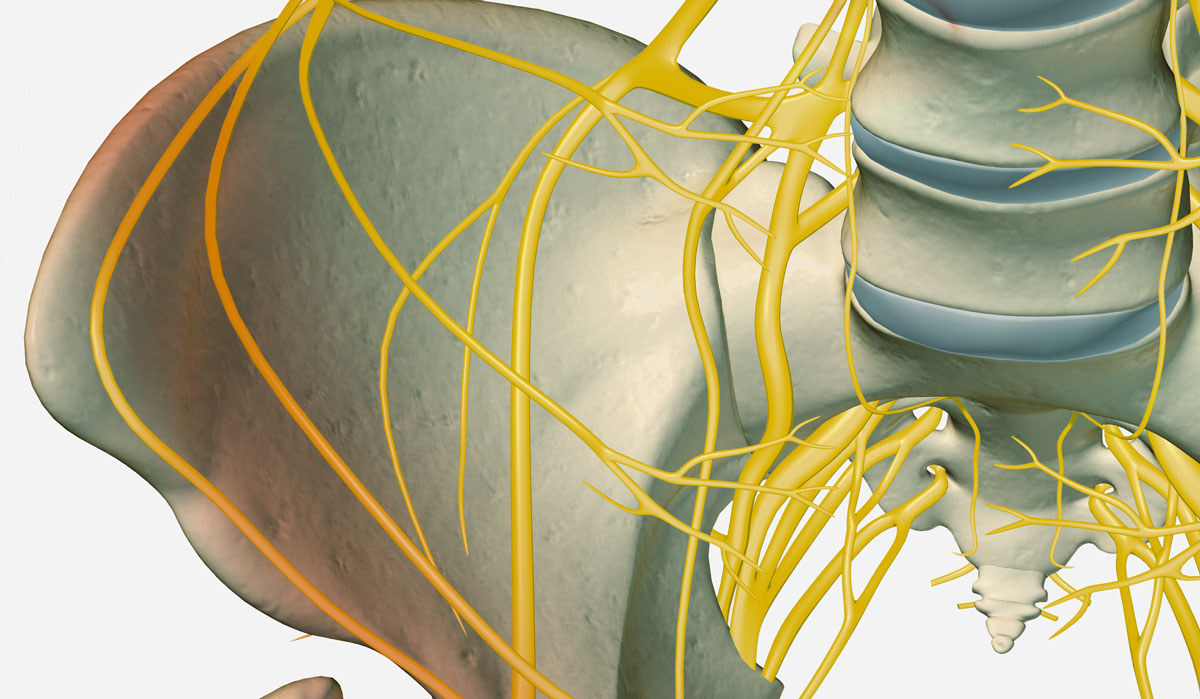 Neuromodulation Offers Surgical Alternative for Fecal Incontinence