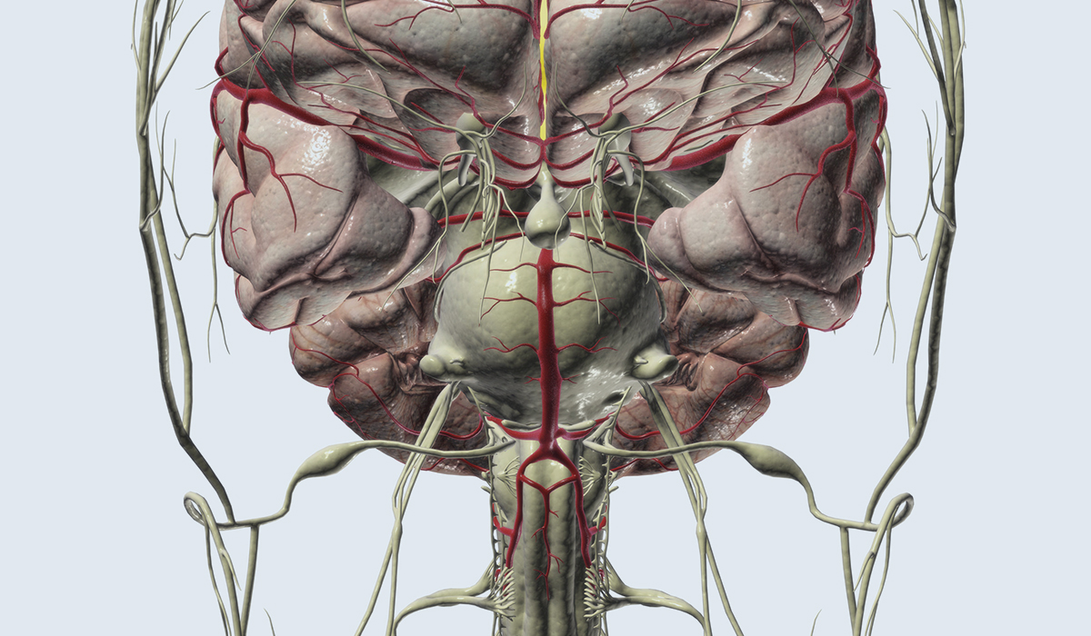 Microvascular Decompression Can Relieve Facial Pain with MS