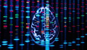 Gene Involved in Bile Processing Tied to Alzheimer's Disease