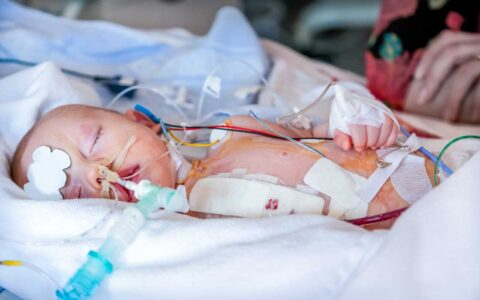 Pediatric and Adult Heart Transplants Surpass Records