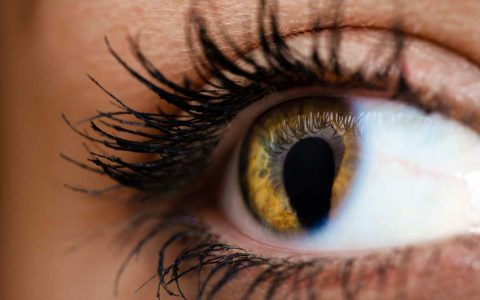 Genetic Clues in Uveal Coloboma